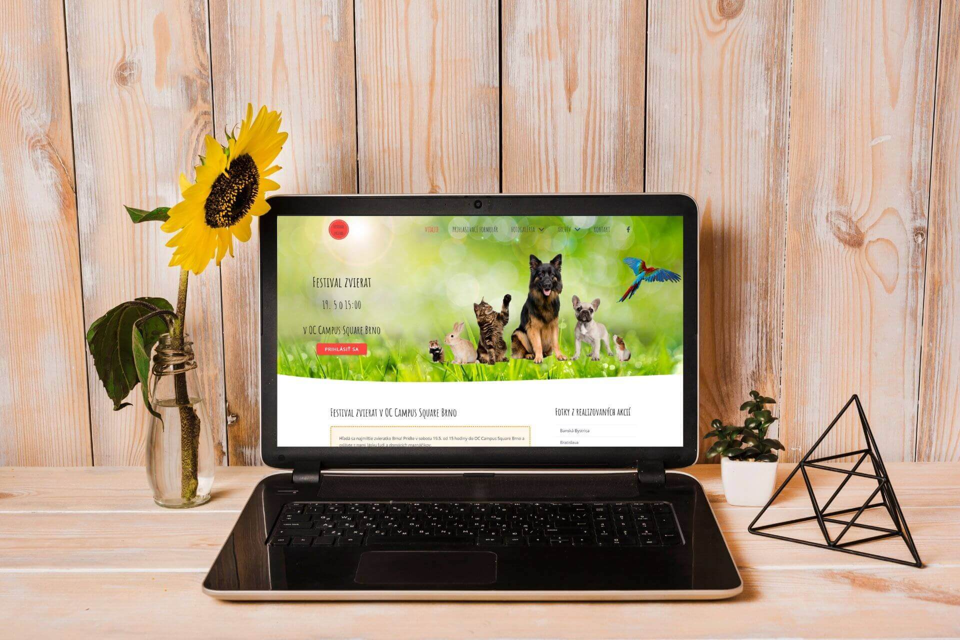 tvorba-web-stranok-akademia-festival-zvierat